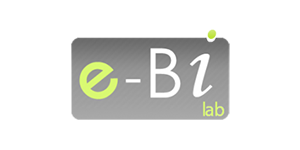 e-Business Intelligence Lab